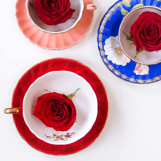 red roses in tea cups