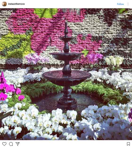 water feature in front of flower wall