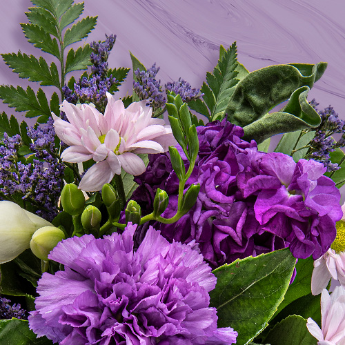 purple winter flowers by Interflora