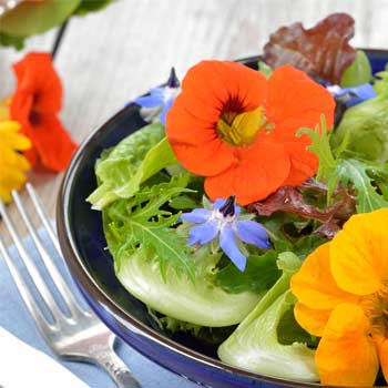 How to make a flower salad