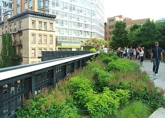 The High Line - a New York City garden