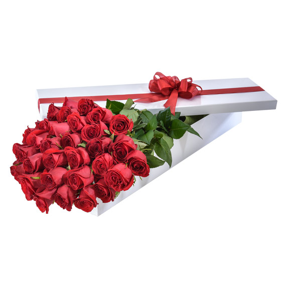 Interflora Australia's 'Make it Special' Valentine's Day arrangement