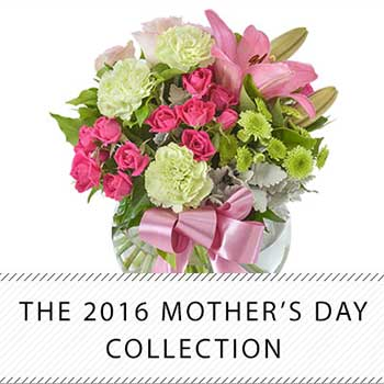 The 2016 Mother's Day Collection