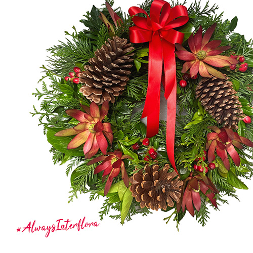 Interflora Christmas flowers