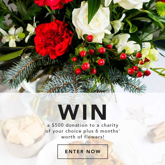 win christmas flowers