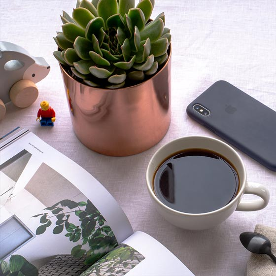 potted succulent with magazine and coffee