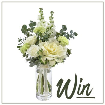 Win the Interflora Elke Arrangement Delivered This Winter