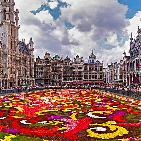 colourful flower carpet