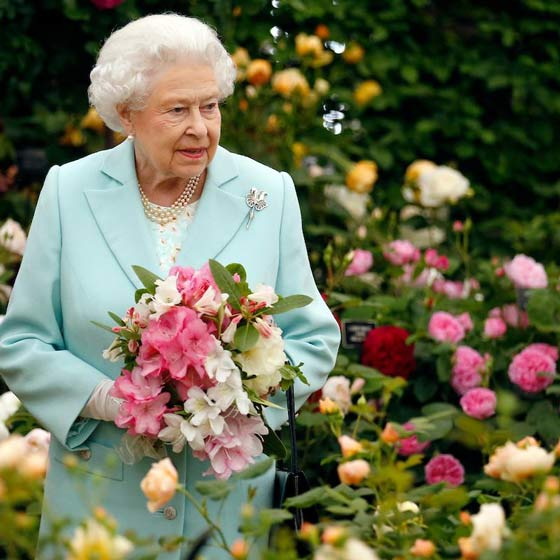 chelsea flower show and the queen