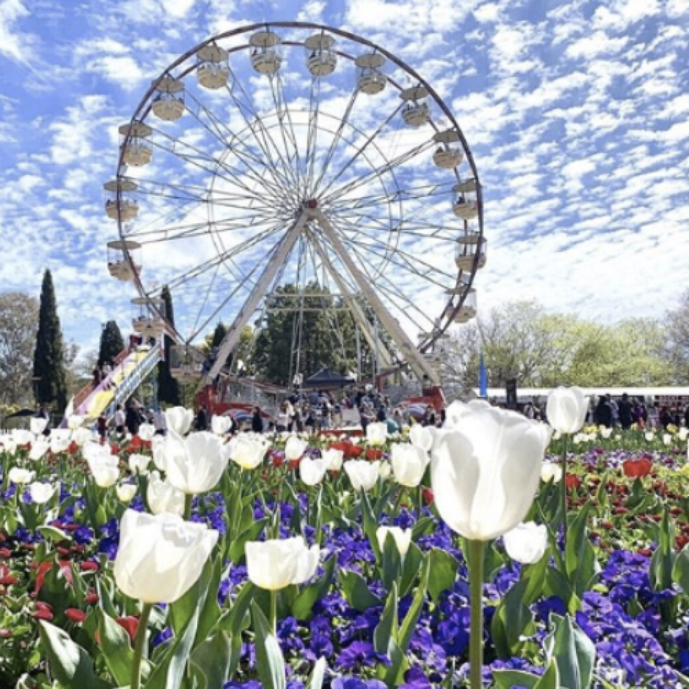 The Best of Floriade 2019
