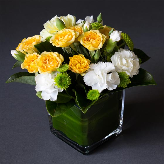 yellow green and white flower arrangement in glass cube