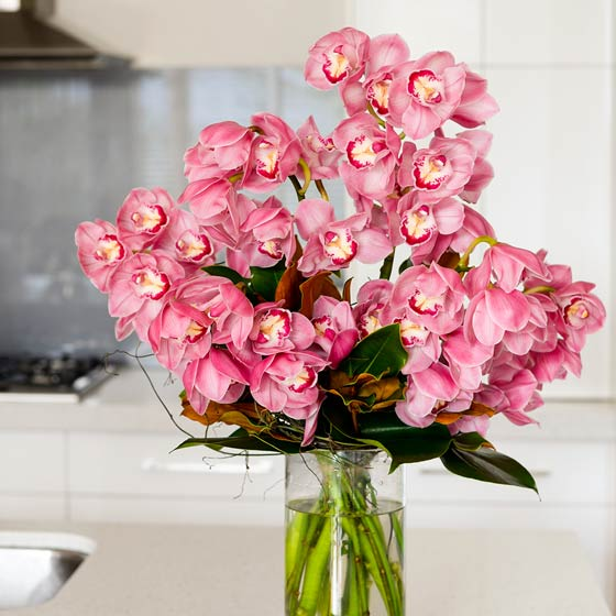 large pink orchids in vase in kitchen