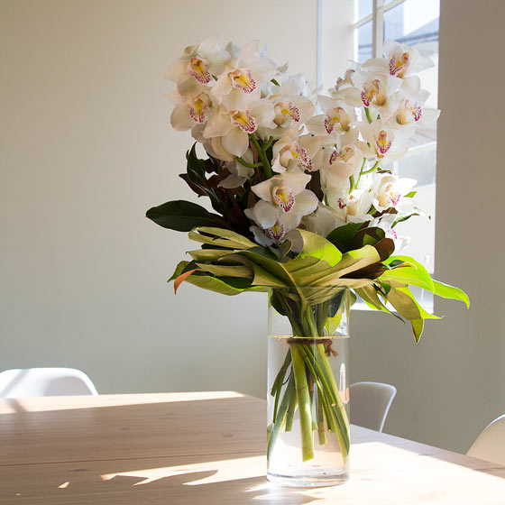 large white orchids in tall vase on table