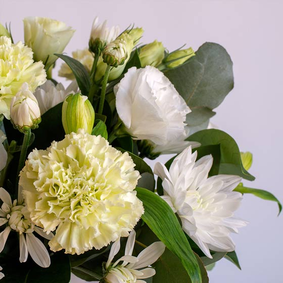 white and soft green flower arrangement and white background