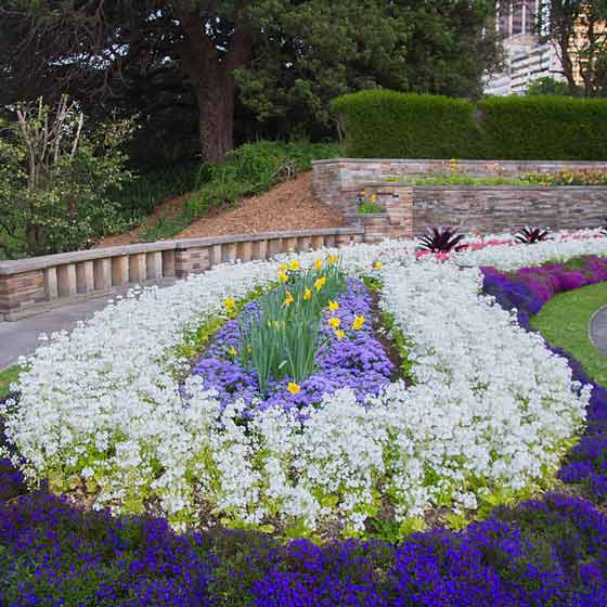 Sydney Royal Botanic Garden Cafe
