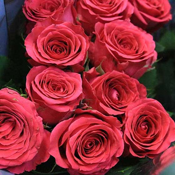 Spray roses interflora spray roses are often combined with other flowers and foliage to create big luscious bouquets mightylinksfo