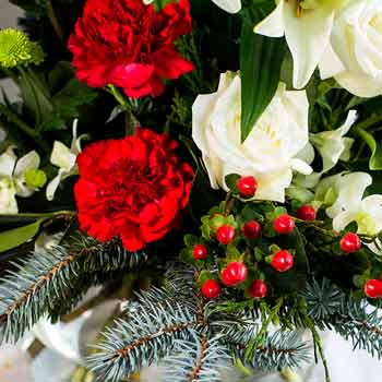 Win with Interflora this Christmas