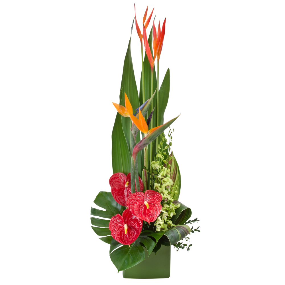 Image of Birthday Flowers - Tropical Arrangement Flowers